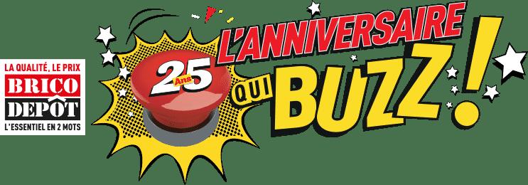 jeu anniversaire qui buzz Brico Dépôt - www.anniversairequibuzz.com