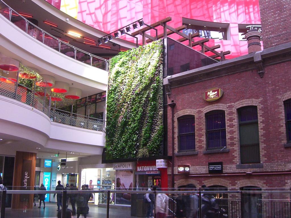 un mur végétal dans un lieu public