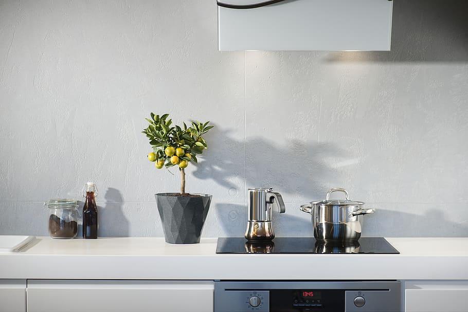 pot de fleurs pour décorer cuisine